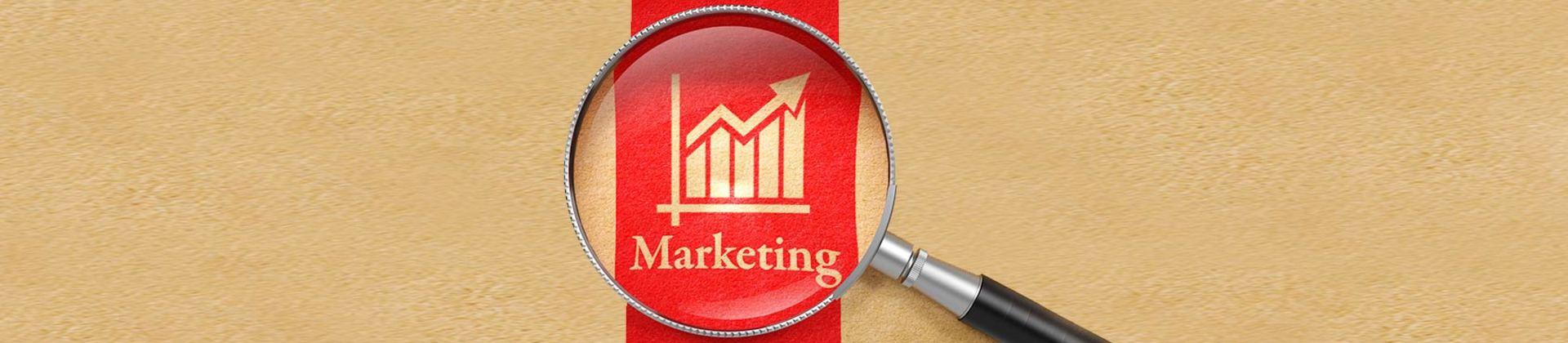Brasília Marketing School - BMS-cursos-Pesquisa de Mercado